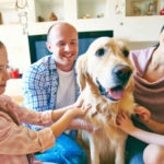 Selecting-a-Pet-for-Your-Family-315