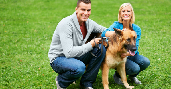 Responsible-Pet-Ownership_-A-Joy-and-Responsibility